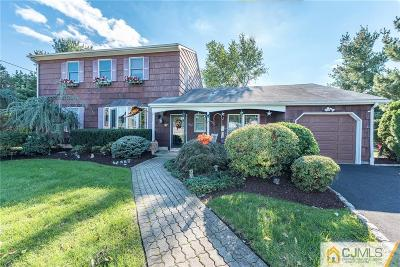 South Plainfield Single Family Home For Sale: 27 Delaney Court