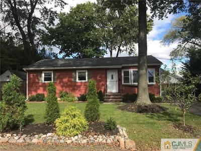 Metuchen Single Family Home For Sale: 32 Volkmar Place