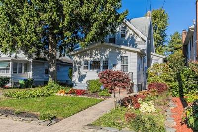 Edison Single Family Home For Sale: 295 Central Avenue