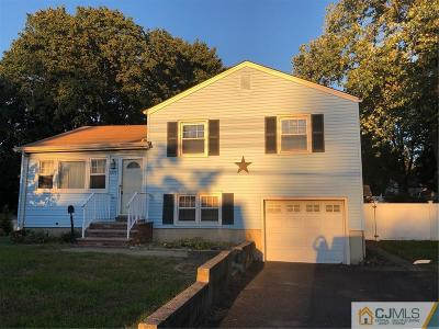South Plainfield Single Family Home For Sale: 3237 Park Avenue