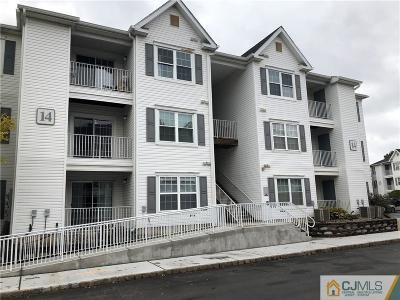 Edison Condo/Townhouse For Sale: 1433 Waterford Drive #1433