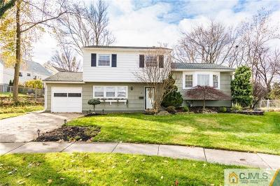 Fords Single Family Home For Sale: 20 Stern Place