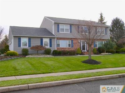 Somerset County Single Family Home For Sale: 6 Pucillo Lane