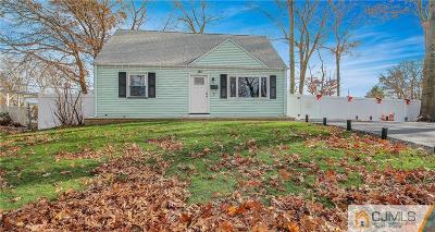 East Brunswick Single Family Home For Sale: 6 Valley View Road