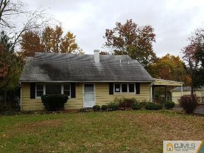 Piscataway Single Family Home For Sale: 3 Kate Terrace
