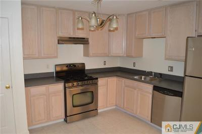 Piscataway Condo/Townhouse For Sale: 228 Pinelli Drive #228