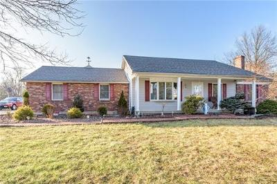 Somerset County Single Family Home For Sale: 99 S Triangle Road