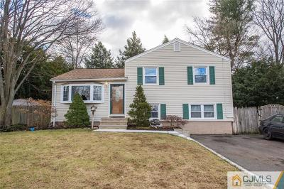South Plainfield Single Family Home For Sale: 139 W Elmwood Drive