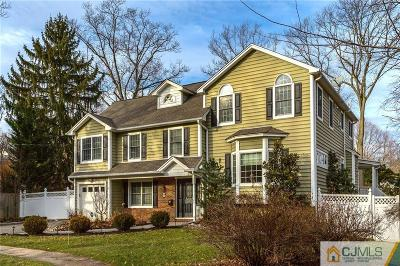 Metuchen Single Family Home For Sale: 9 Lee Court