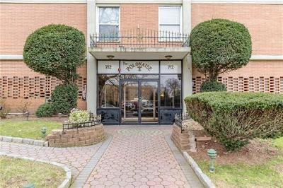 Elizabeth Condo/Townhouse For Sale: 704 N Broad Street #3E