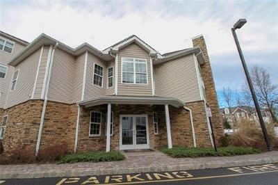 Piscataway Condo/Townhouse For Sale: 327 Pond Lane #327