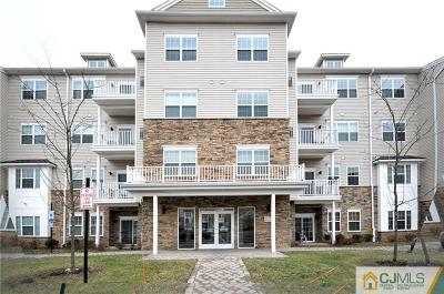 Piscataway Condo/Townhouse For Sale: 234 Luca Drive Drive