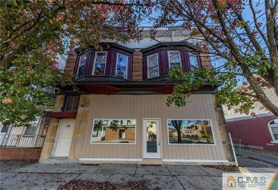 Somerset County Multi Family Home For Sale: 45 Thompson Street