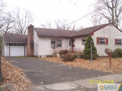 Piscataway Single Family Home For Sale: 1617 Meister Street