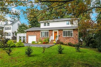 Metuchen Single Family Home For Sale: 290 Middlesex Avenue