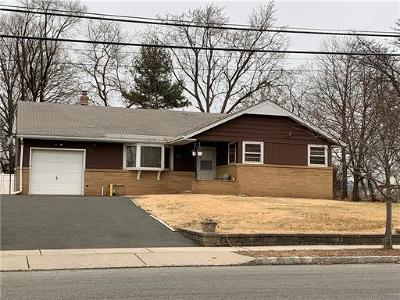 Piscataway Single Family Home For Sale: 44 Haines Avenue