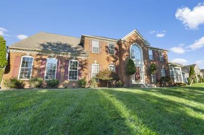 Somerset County Single Family Home For Sale: 6 Barbieri Court