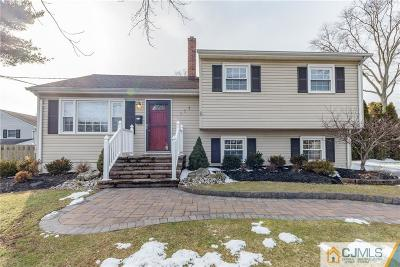 South Plainfield Single Family Home For Sale: 117 Ivy Street