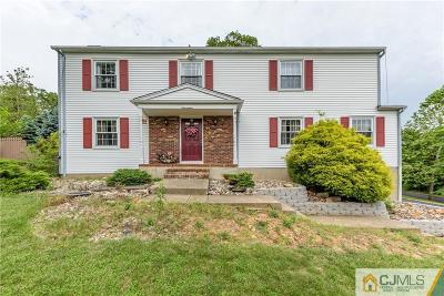 Somerset County Single Family Home For Sale: 17 Remrose Ledge .