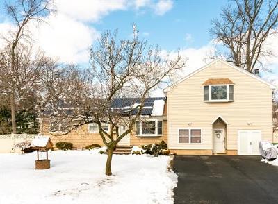 Edison Single Family Home For Sale: 264 W Prescott Avenue