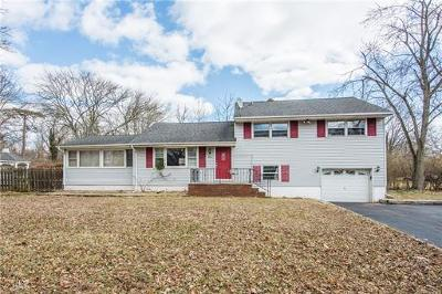 Piscataway Single Family Home For Sale: 301 River Road