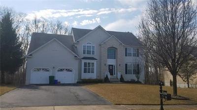 Monroe Single Family Home For Sale: 54 McFarlane Circle