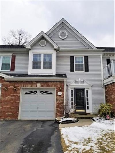 Somerset County Condo/Townhouse For Sale: 133 Topaz Drive #165