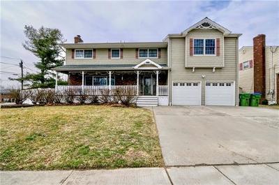 Edison Single Family Home For Sale: 1 Bodnarik Road
