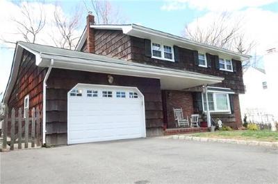 Metuchen Single Family Home For Sale: 177 Lake Avenue