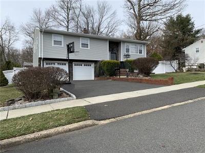 South Plainfield Single Family Home For Sale: 117 E Elmwood Drive