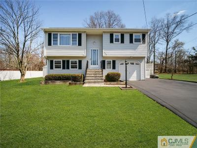 Somerset County Single Family Home For Sale: 229 Howard Avenue