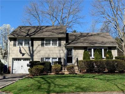 Metuchen Single Family Home For Sale: 28 Turner Court