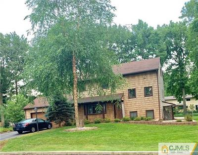 Edison Single Family Home For Sale: 19 Peru Street