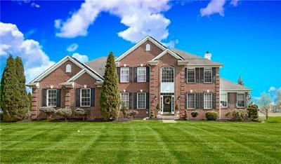 West Windsor Single Family Home For Sale: 243 South Lane