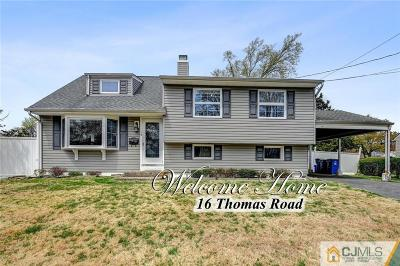 Somerset County Single Family Home For Sale: 16 Thomas Road