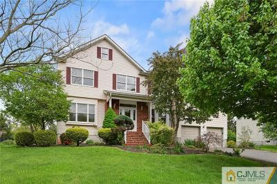 Somerset County Single Family Home For Sale: 130 Ketcham Road