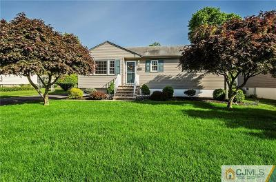 Piscataway Single Family Home For Sale: 321 Evans Avenue