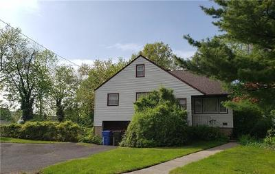 Fords Single Family Home For Sale: 13 Snyder Road
