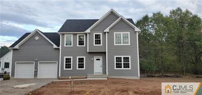 Somerset County Single Family Home For Sale: 293 Cedar Avenue