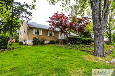Piscataway Single Family Home For Sale: 206 Runyon Avenue