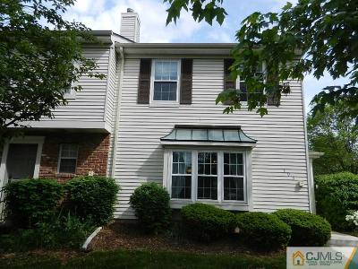 Somerset County Condo/Townhouse For Sale: 393 Inwood Court