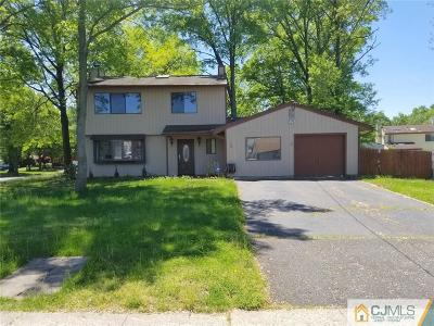 Piscataway Single Family Home For Sale: 146 Mountain Avenue