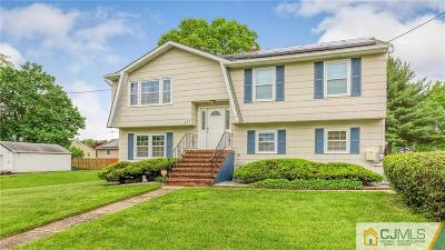 Piscataway Single Family Home For Sale: 323 Plainfield Avenue