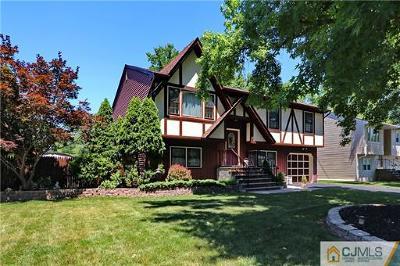 Edison Single Family Home For Sale: 20 Mount Pleasant Avenue