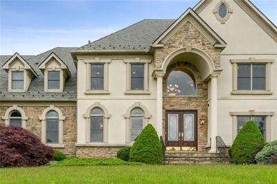 Somerset County Single Family Home For Sale: 348 Bunker Hill Road NE