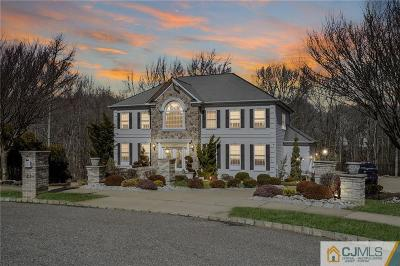 Single Family Home For Sale: 41 Stonegate Drive