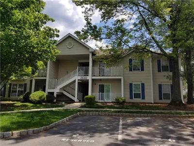 Somerset County Condo/Townhouse For Sale: 18 Opal Court