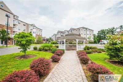 Piscataway Condo/Townhouse For Sale: 343 Pond Lane