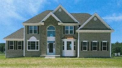 Monroe Single Family Home For Sale: 38 Lower Matchaponix Avenue