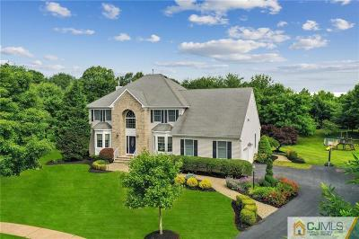 Somerset County Single Family Home For Sale: 24 Breckenridge Court